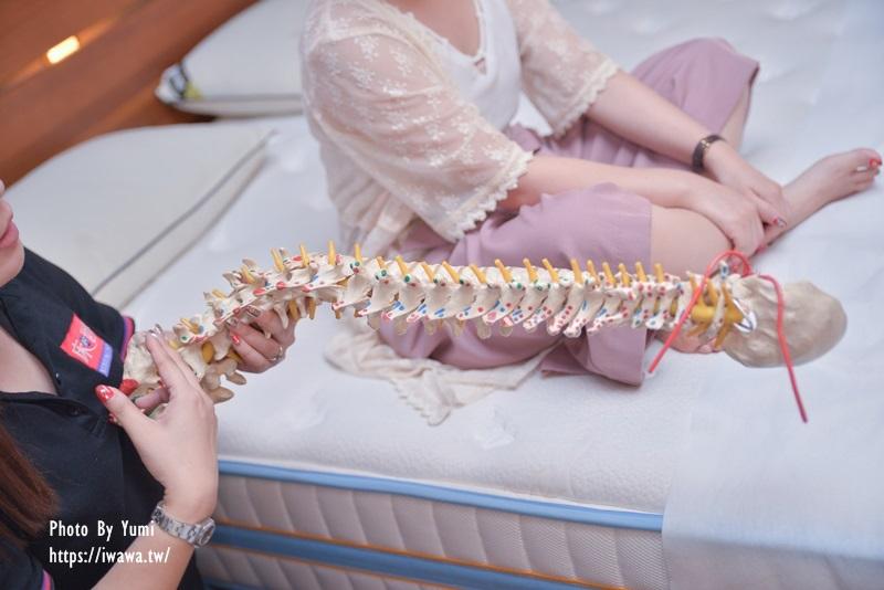 脊椎彎度|雙人床